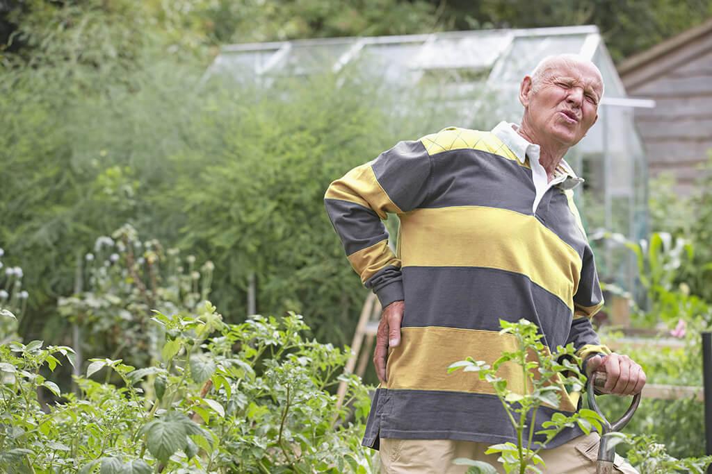 Ein älterer Mann hält sich schmerzend den Rücken bei der Gartenarbeit.