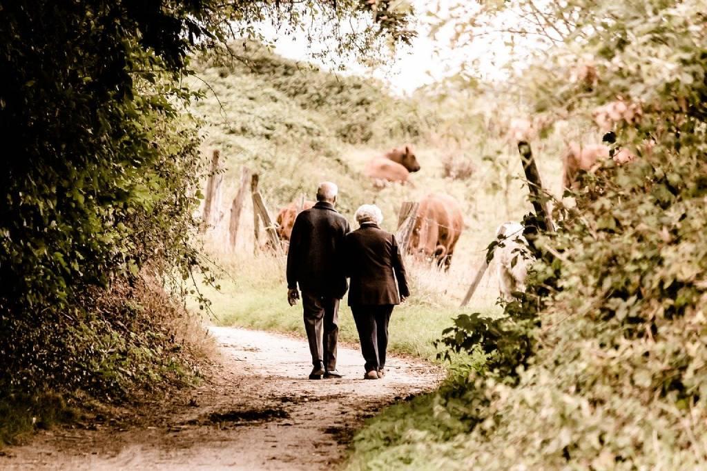 Ein Paar spaziert durch den Wald.